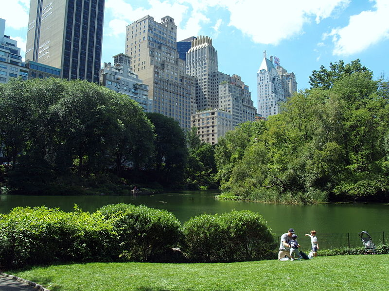 Lower Central Park in New York City